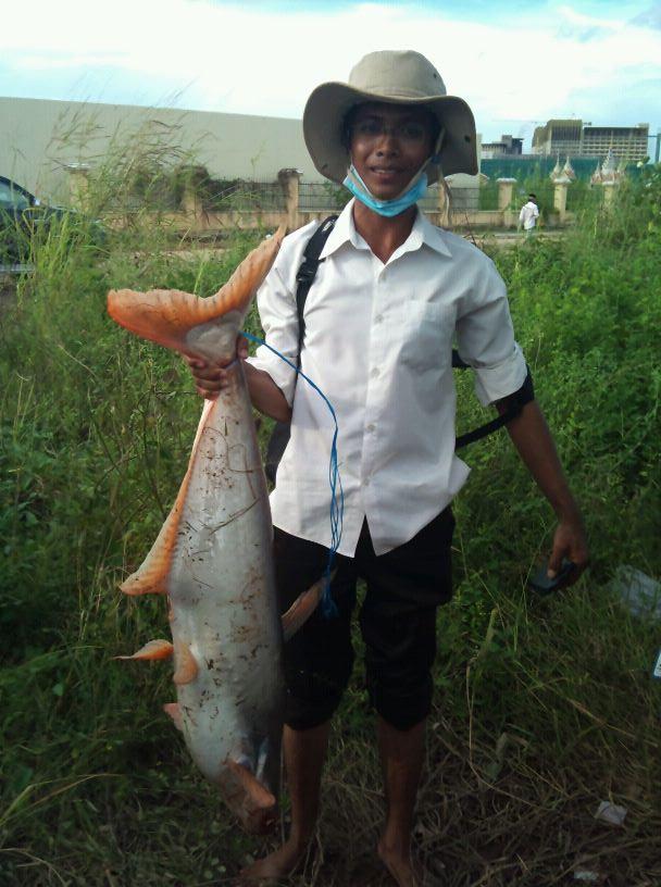 I caught a big fish last year
